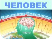 Мозг человека работает на частоте 7,83 Герца